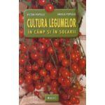 Cultura legumelor in camp si in solarii