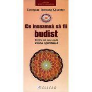 Ce inseamna sa fii budist. Pentru cei care cauta calea spirituala