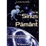 De la Sirius la Pamant. Un terapeut descopera un schimb de suflete