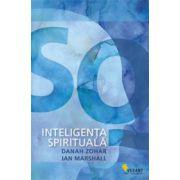 Inteligenta spirituala SQ