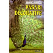 Pasari decorative