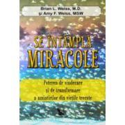 Se intampla miracole. Puterea de vindecare si de transformare a amintirilor din vietile trecute