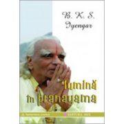 Lumina in pranayama. Ghidul complet al artei respiratiei