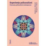 Experienta psihanalizei. Panorama psihanalizei contemporane